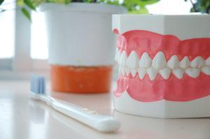 歯並びが「ちょっと悪い」だけでも身体に不調が現れる!?